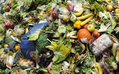 Waste is 100% Profit